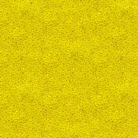 lemon peel fabric by weavingmajor on Spoonflower - custom fabric