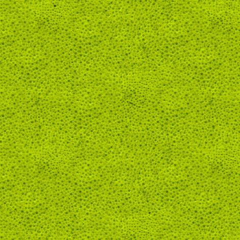 lime peel fabric by weavingmajor on Spoonflower - custom fabric