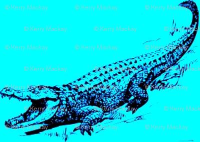 alligator blue