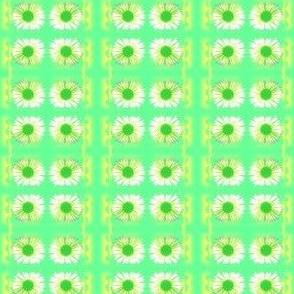 Soft Daisy Stripe