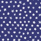 Ducky White Stars over Blue