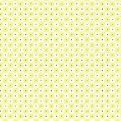 Rdouble_dot_over_in_citrus_shop_thumb