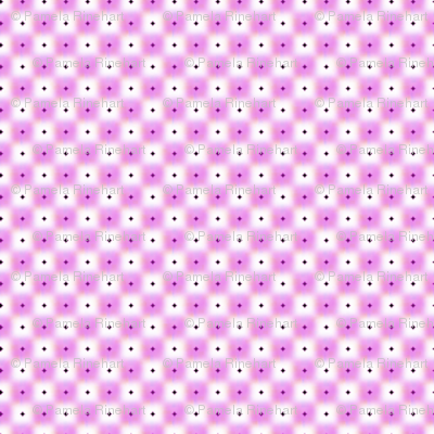 double dot over in orchid