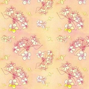 Orange Creme Blossom