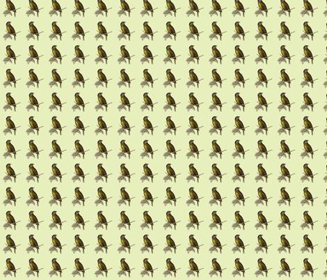 bird-green fabric by weebeastiecreations on Spoonflower - custom fabric