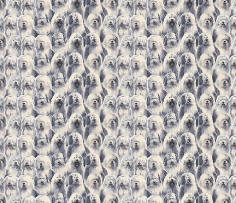Old English Sheepdogs fabric by oesgirl on Spoonflower - custom fabric