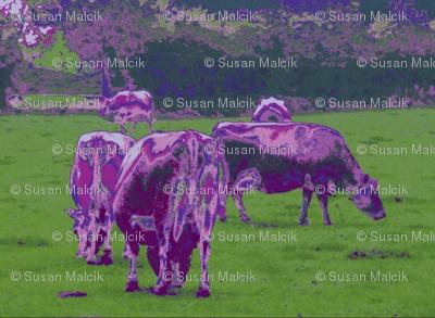 Purple Cows - pillow version