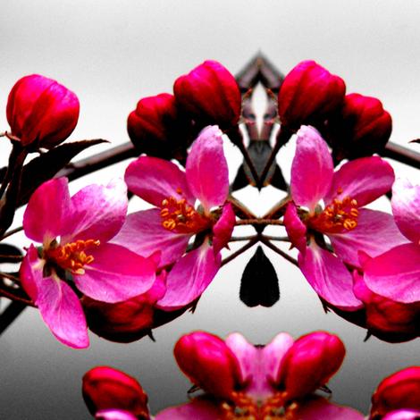 Appleblossom fabric by sharpestudiosdesigns on Spoonflower - custom fabric