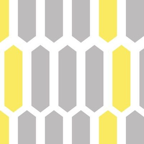 Gray and Yellow Geometric