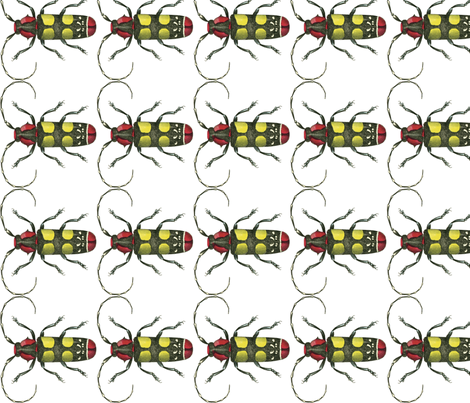 Long-horned Beetle fabric by flyingfish on Spoonflower - custom fabric
