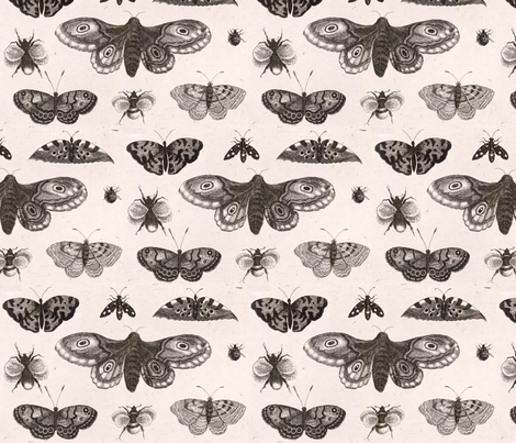 A Moth, Butterflies and Bees fabric by flyingfish on Spoonflower - custom fabric