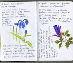 Rrrflower_journal3_comment_437007_preview
