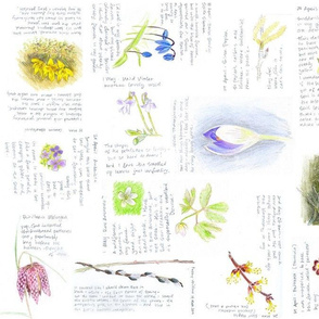 flower journal II