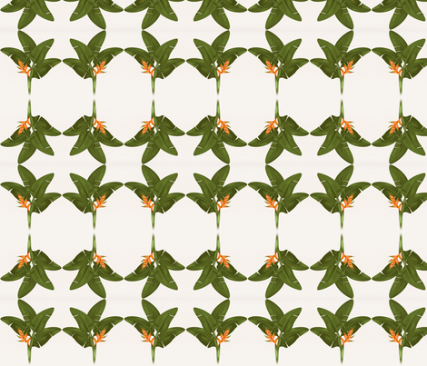 Heliconia fabric by flyingfish on Spoonflower - custom fabric