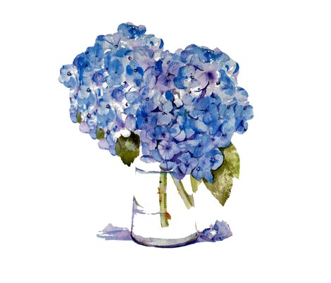Rcape_cod_hydrangeas_on_white_new-1_shop_preview