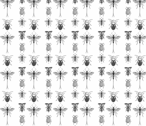Beetles, Weevils and Mayflies fabric by flyingfish on Spoonflower - custom fabric
