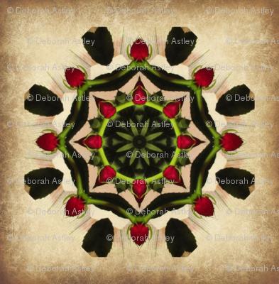 Rose Star Tile