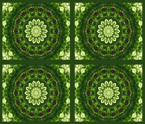 Star of Basil fabric by anniedeb on Spoonflower - custom fabric