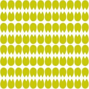 TULIP.olive