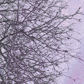 pale purple gray branches vertical