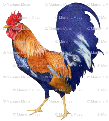 Rooster Large
