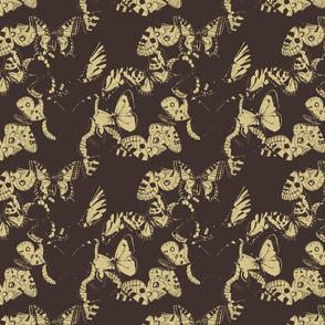butterflys-ch1