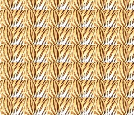 Rrtiger_stripes_ed_shop_preview