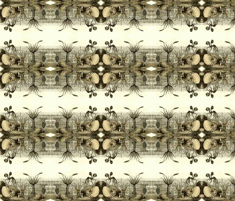 Molluscus-ch fabric by flyingfish on Spoonflower - custom fabric