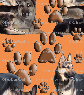german shepherds on a coral backround