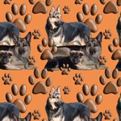Rrrrrseamless_gsd_family_fabric_coral_background_shop_thumb