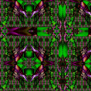 dragonfly_patterntest2