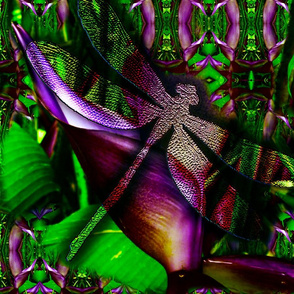 dragonfly_colortest1
