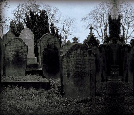 Haworth Graveyard fabric by peacoquettedesigns on Spoonflower - custom fabric
