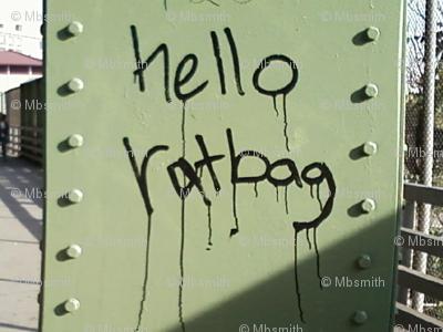 Hello, Ratbag