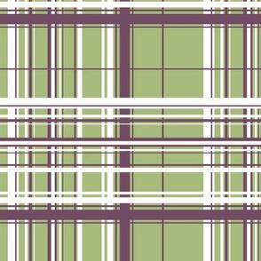 White & Purple Plaid w/ Green Background