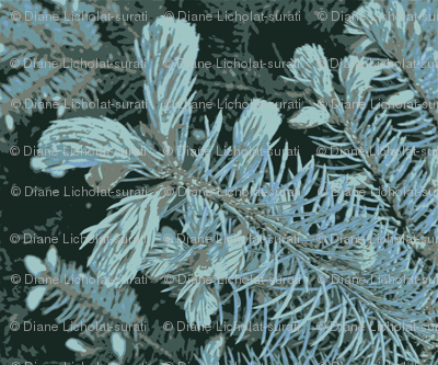 "Spring Blue Spruce ""Snowflakes"""