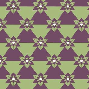 geometric_star