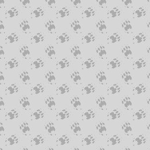 Cat_Trax_-_Smokey