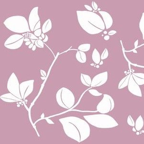 Blooming (rose)
