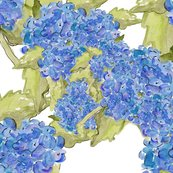 Rrhydrangea_shop_thumb