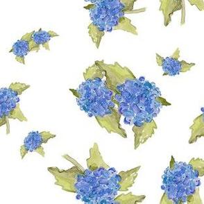 Hydrangea Ditsy