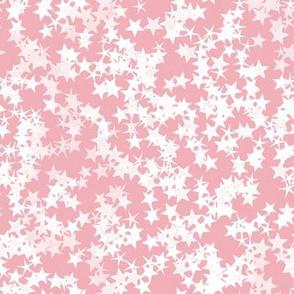 Simple Stars 17