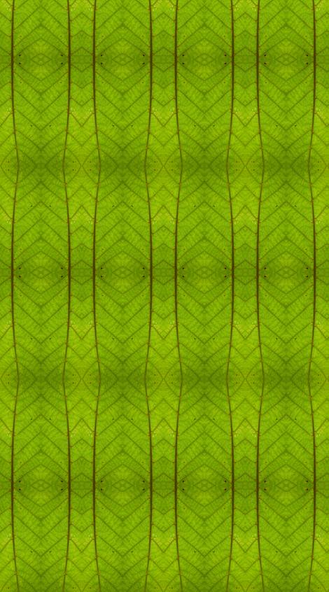 Jaho fabric by joancaronil on Spoonflower - custom fabric