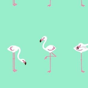 flamingoes Turquoise XL