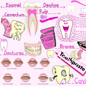 DENTAL ANATOMY