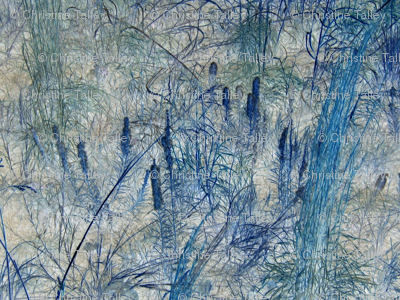 Texas Winter Grasses II