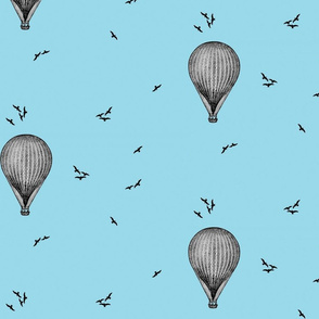 Hot air ballons and flying birds