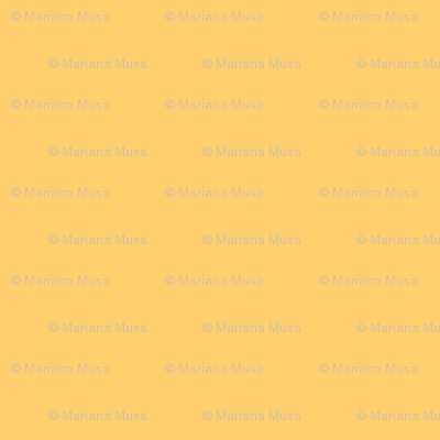Daisy Joy Yellow Plain