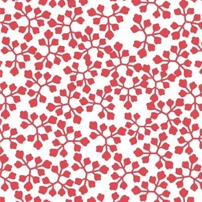 08_leaves_raspberry