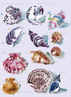 cestlaviv_shells